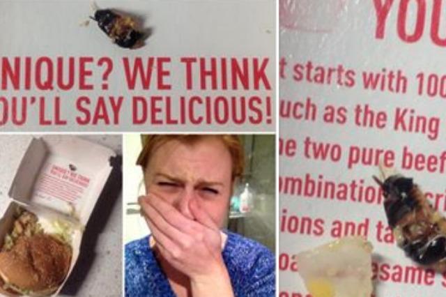 The Cockroach and Annah Sophia Stevenson