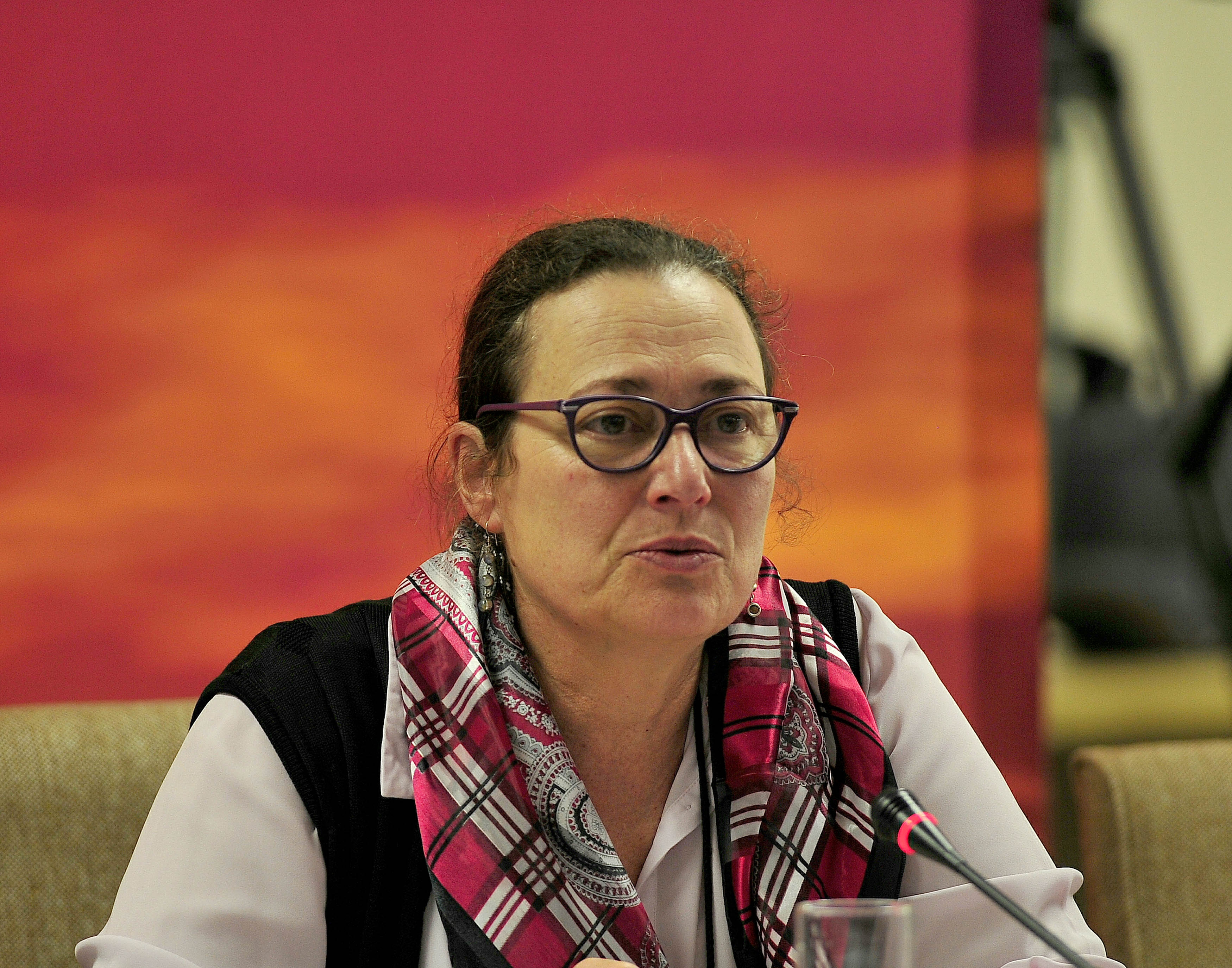 JOHANNESBURG, SOUTH AFRICA � SEPTEMBER 13: Commissioner; Janet Love during the Human Rights Commission...