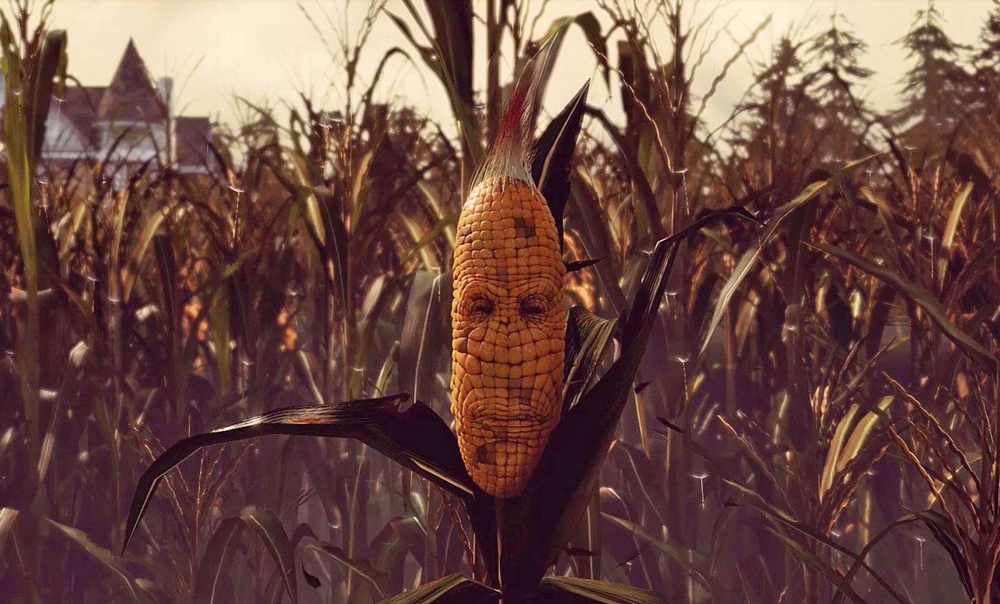 maize-ed2.jpg