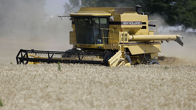 A combine harvests wheat in a field near Perry, Kan., Sunday, July 5, 2015. Normally, the flood of new grain coming in at harvest time drives down crop prices, but wheat prices have actually risen since mid-June.  (AP Photo/Orlin Wagner)