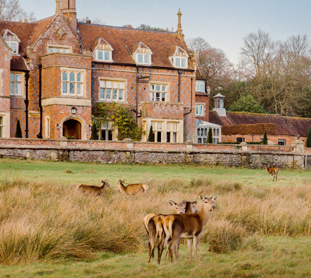 Old Deer Park Rugby Club: Win! A Short Break For Two In The New Forest