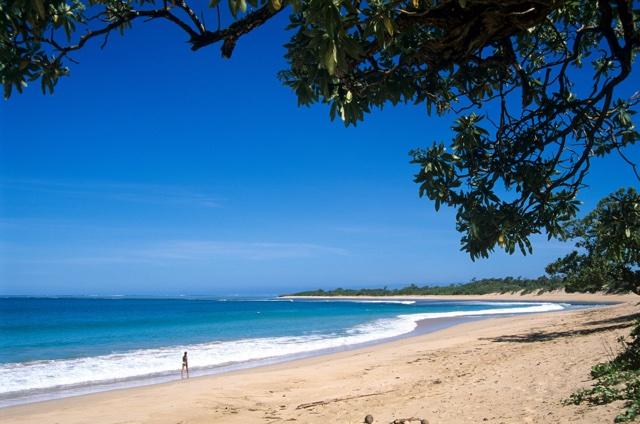 Holidaymakers find human head on Fiji tourist beach