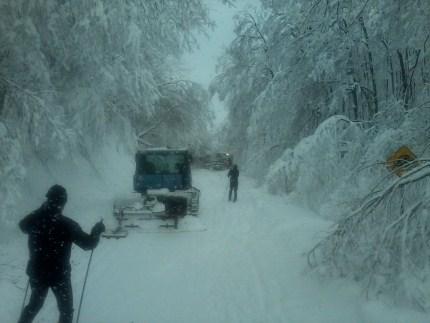 La désolation sur les sentiers du Parc de la Gatineau durant la tempête de