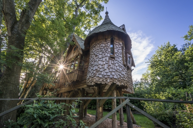 Treehouse stay in East Sussex