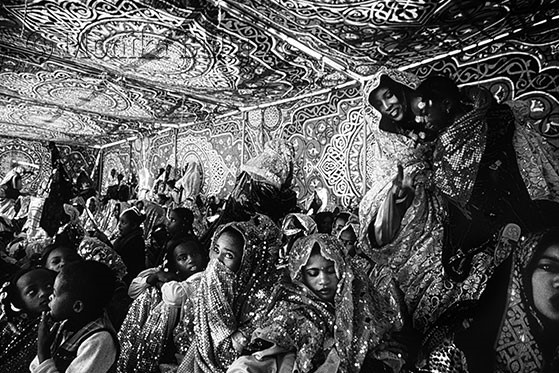 Viaggiando con i Tuareg, ho imparato che il cielo notturno è una tenda sfilacciata, le cuciture sono...