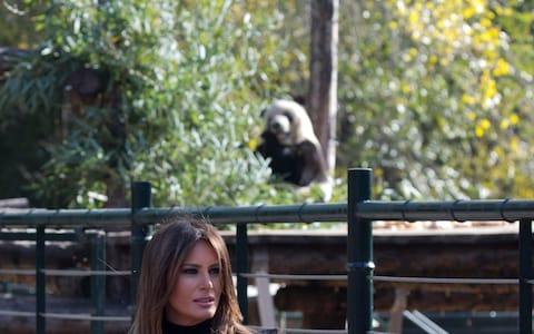Melania Trump consigue el mejor photobomb gracias a un adorable