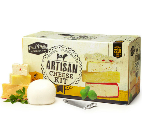 Artisan cheesemaking kit Christmas gift