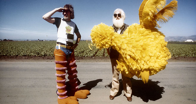 i am big bird, i am big bird hot docs, carol spinney, hot docs