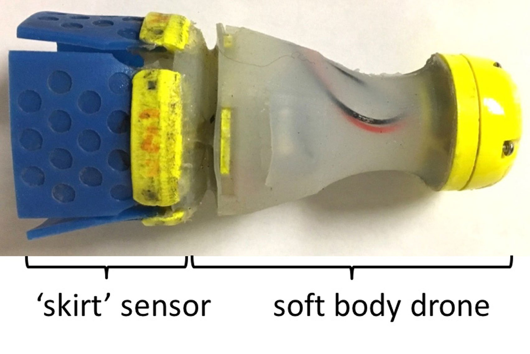 Tiny robot prowls water lines in search of leaks