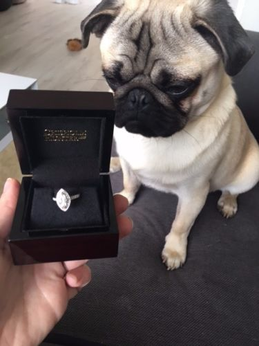 The ring is beautiful. I mean, Brad probably picked it as he has great taste. But it just reminds me...