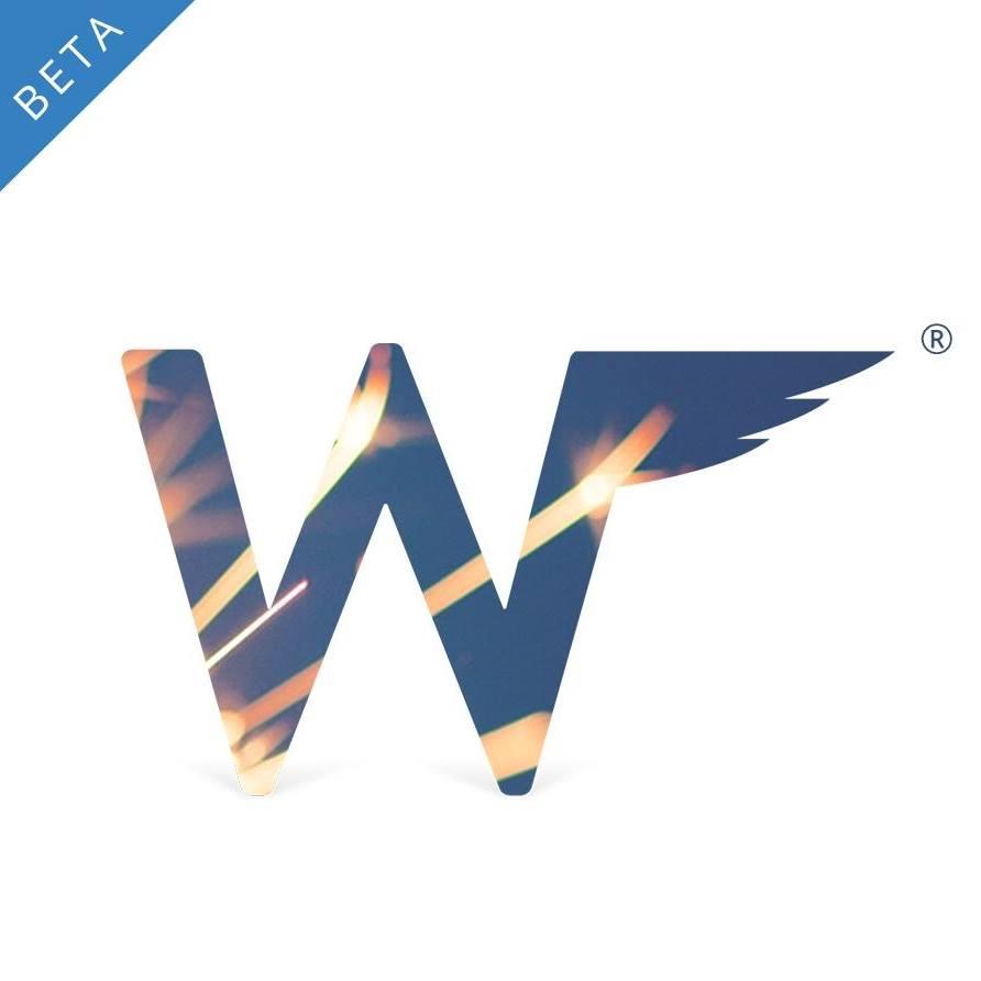 Wingman's flashy new