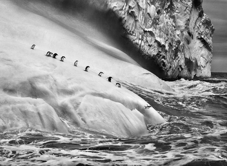 Monet e Henri Cartier Bresson, Salgado e Andy Warhol. 7 mostre da vedere nel