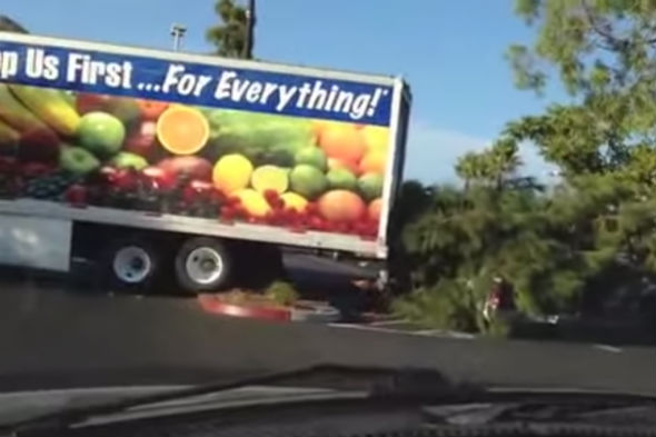 Reversing lorry crashes into tree