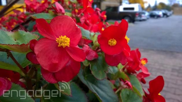Lumia 735 rear camera photo
