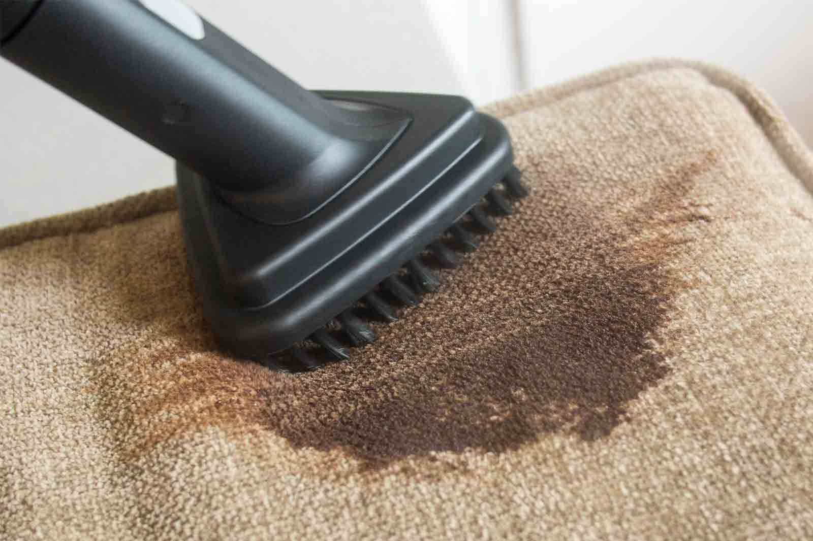 the best portable carpet and upholstery cleaner rh engadget com carpet cleaners facebook carpet cleaners falkirk