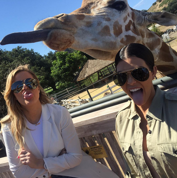 kourtney and khloe kardashian at safari park
