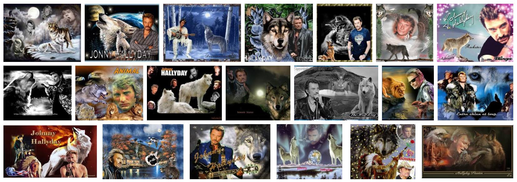 Le Loup L Animal Qui Colle A La Peau De Johnny Hallyday Le
