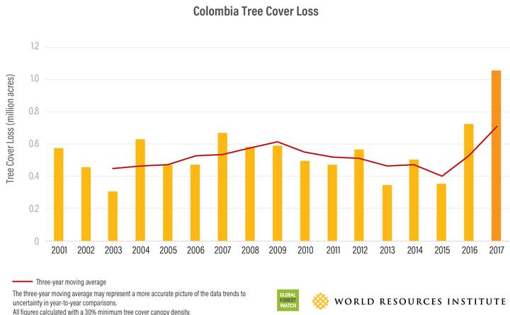 Pérdida de árboles en Colombia en los últimos años.