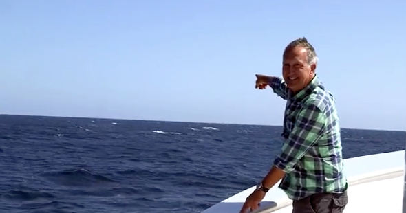 BBC presenter upstaged by blue whale (video)