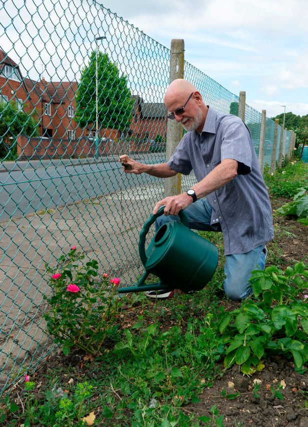 Council order gardener to rip up allotment flowers