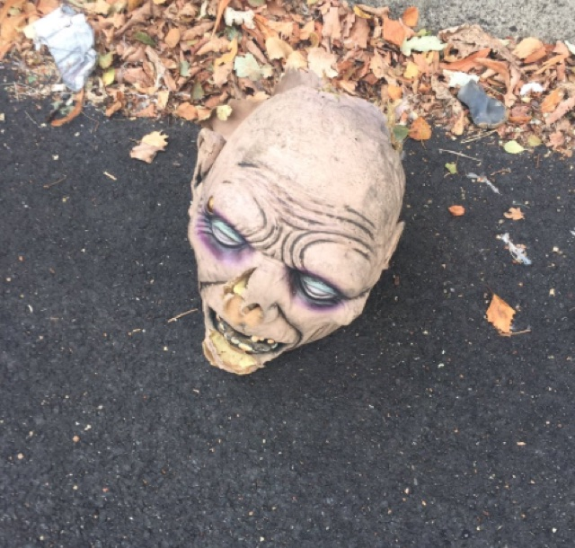 'Human head' discovered outside London cemetery