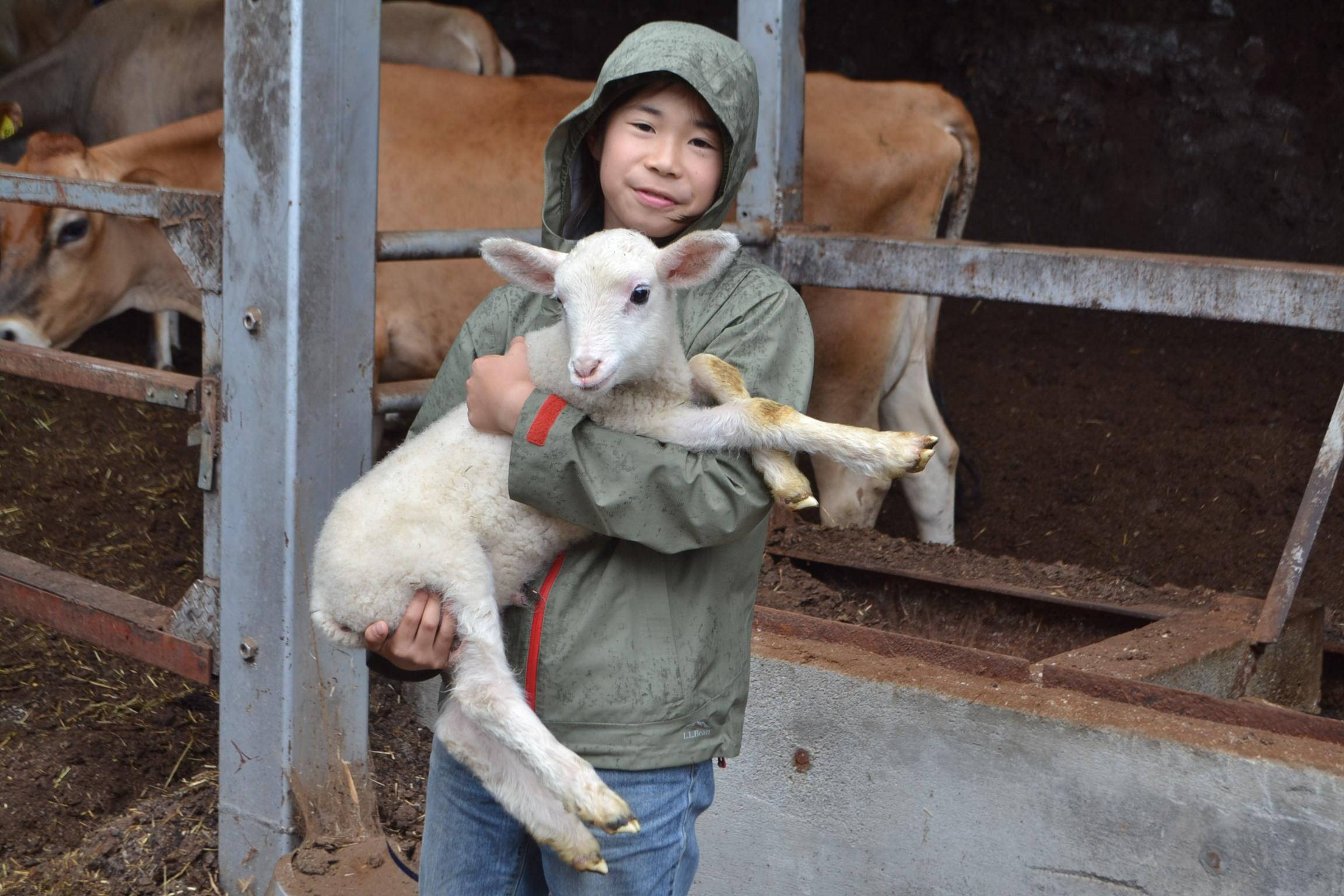 生まれて間もない子ヤギを抱く鷹之介君=磯沼ファームで