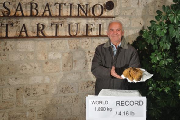 world's largest truffle