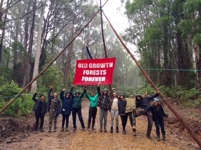 Saved! Victoria's Kuark Forest Has Been Spared... For