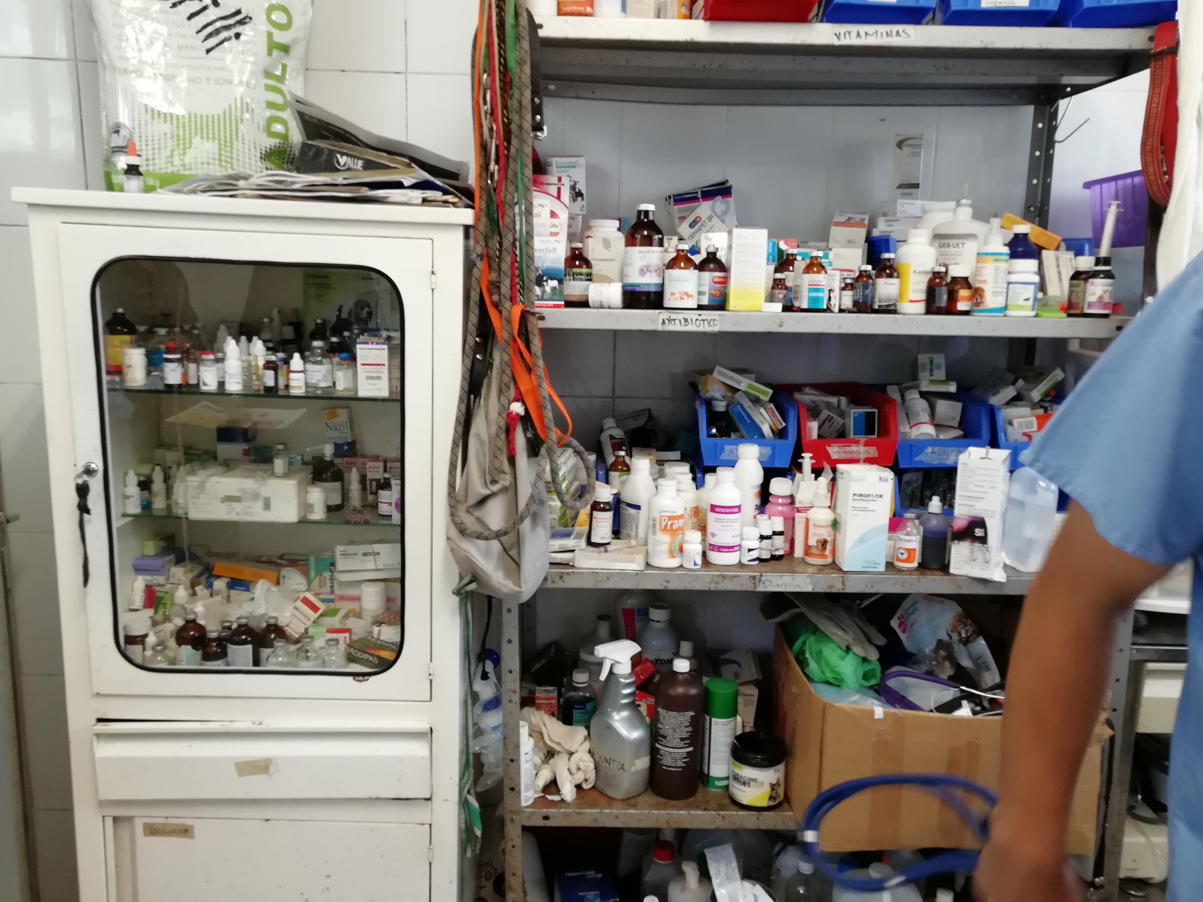 Medicamentos con los que la Brigada Animal de la policía de la Ciudad de México cura a perros enfermos...