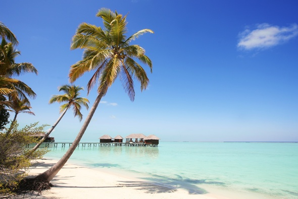 Opodo reveals most outrageous customer holiday complaints