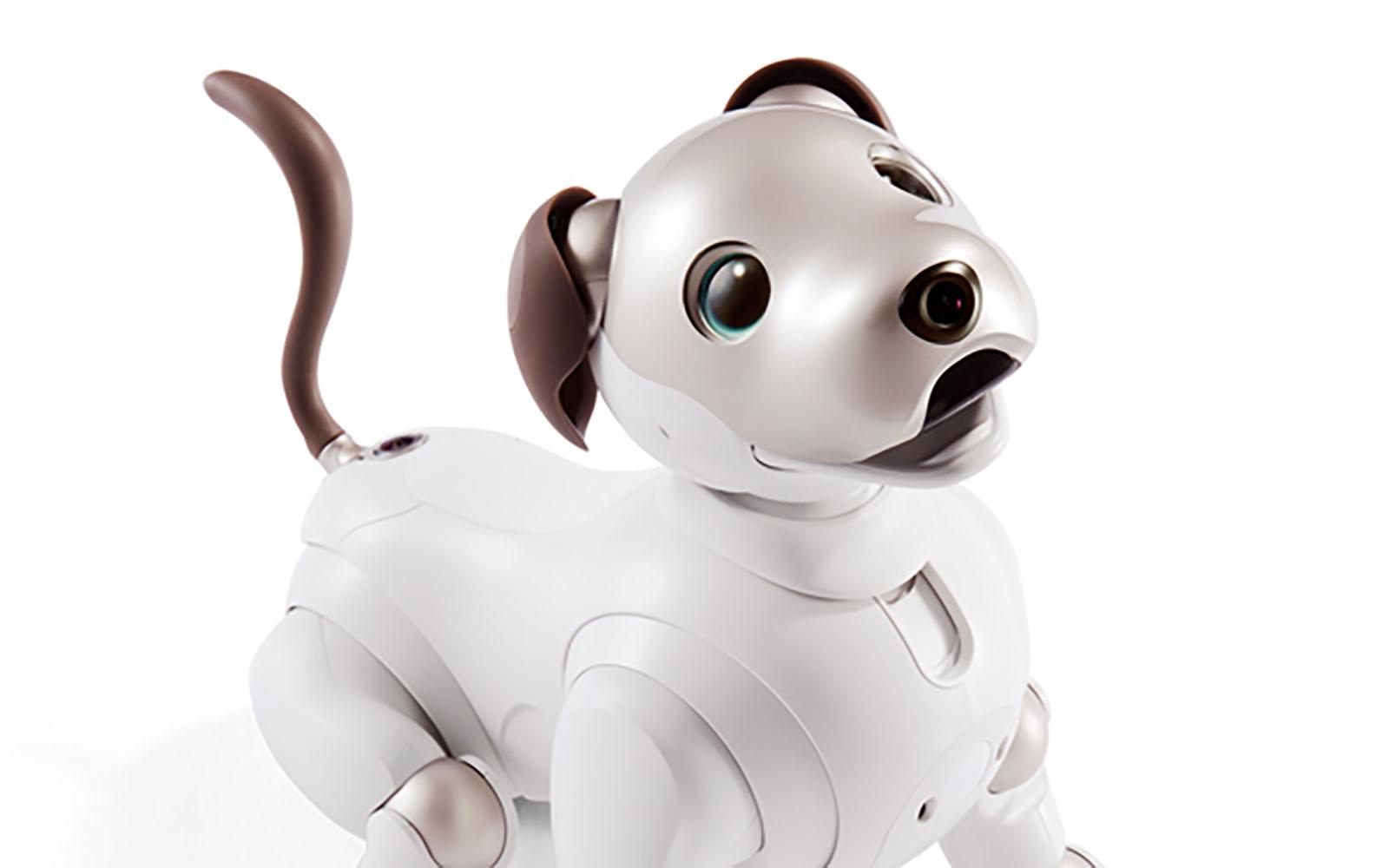 Sony aibo 機器狗回來了!