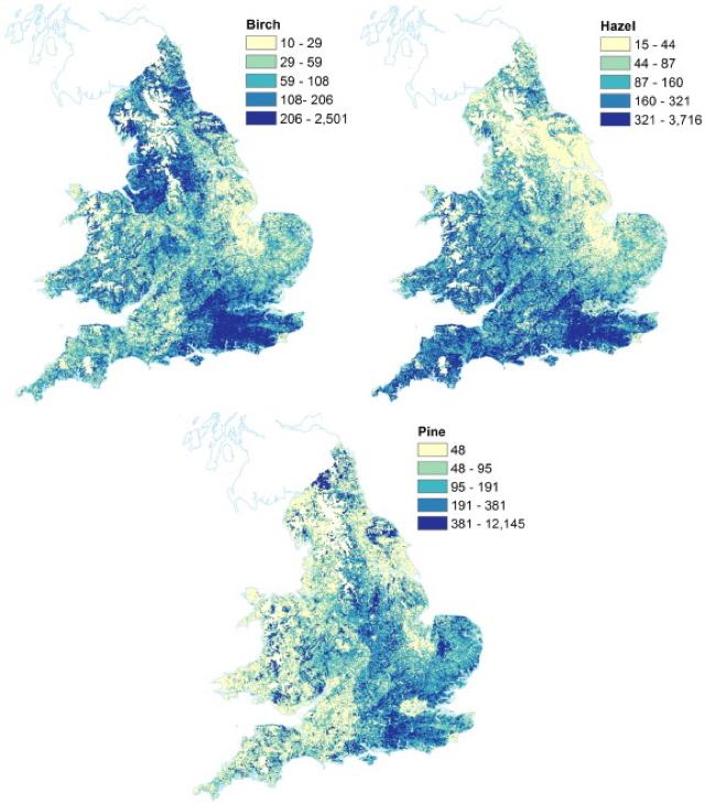 First ever hay fever map reveals UK pollen hotspots