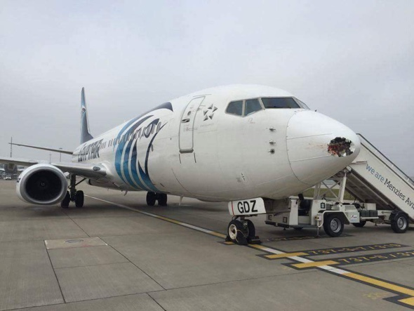 Hole in plane after bird strike at Heathrow Airport