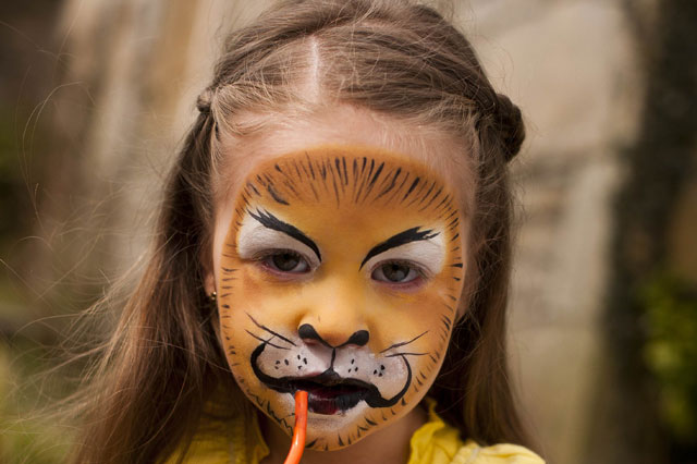 a6aaaa8c4 Face Painting Ideas  Lion