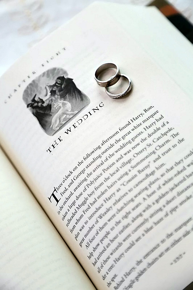 Harry Potter wedding, Alex and Zoe Pitas