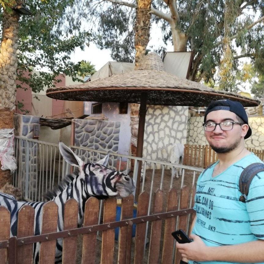 Ce zoo a peint un âne pour faire croire qu'il avait un