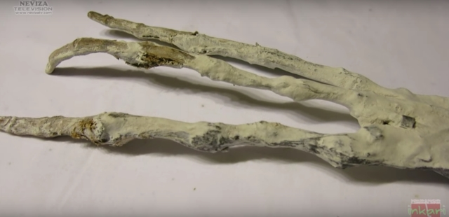 alien hand found in peru
