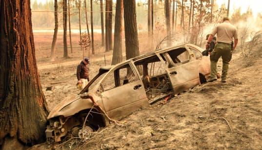 Los incendios en California dejan ya 31 muertos y más de 200