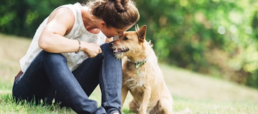 Find a pet sitter that loves your furry friend as much as you do.