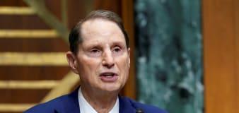 A top Democrat releases details of proposed billionaires tax