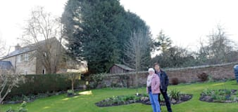 Homeowner refuses council order to trim trees