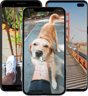 Multiple phones with shoes, dog, and bridge