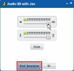 AIM Audio Chat